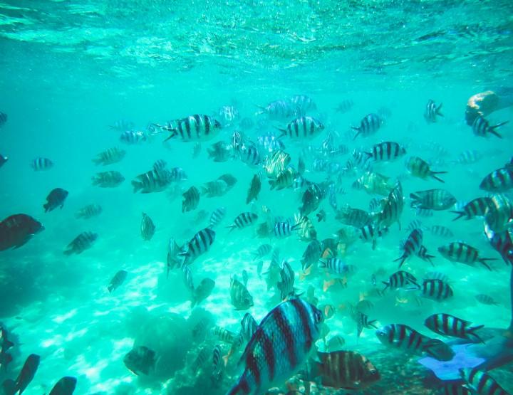 De mooiste eilanden van Thailand
