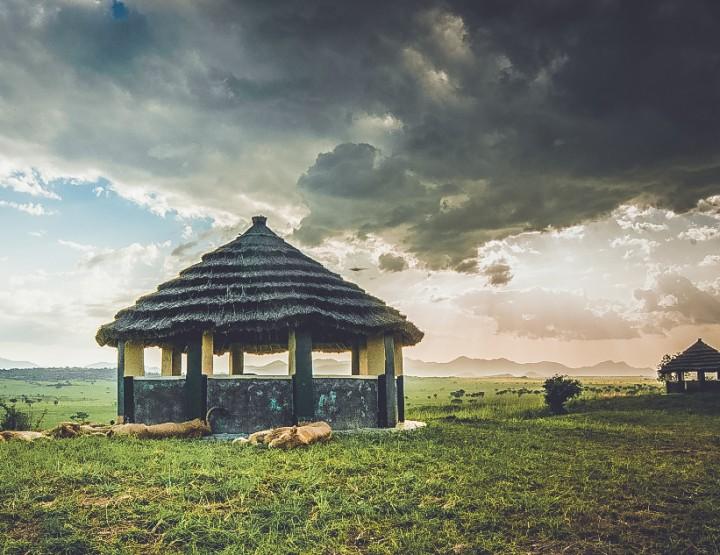 De highlights van Rwanda
