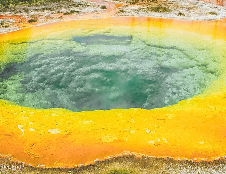 Highlights van Yellowstone National Park