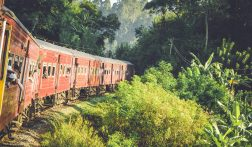 6 Must see bezienswaardigheden in Ella, Sri Lanka