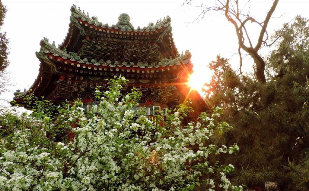 Imperial garden