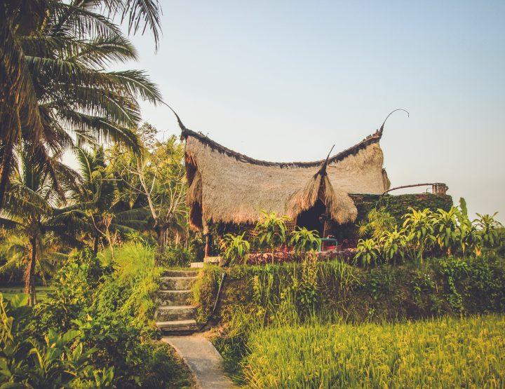 De 10 leukste hostels op Bali