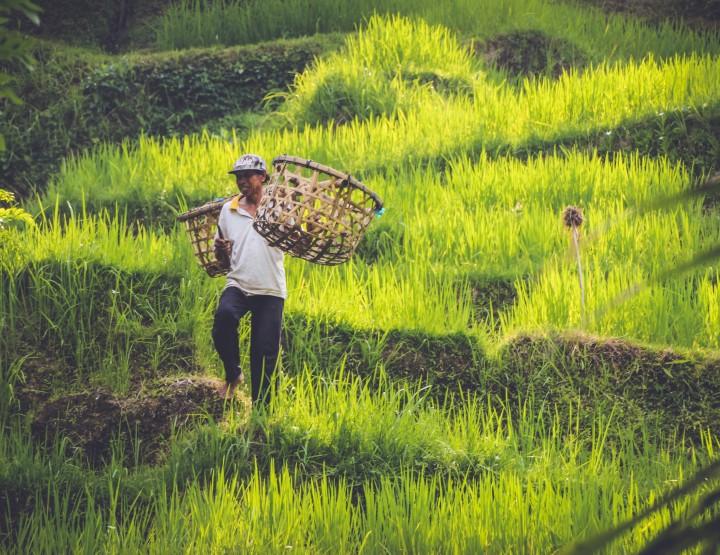 De ultieme bucket list voor avontuurlijk Indonesië