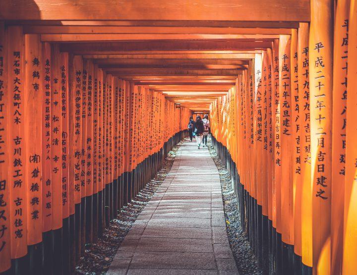 Dit is de meest gave reisvideo van Japan ooit gemaakt
