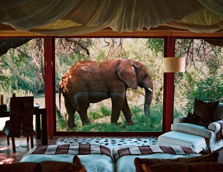 Dit is de meest romantische lodge van Zuid-Afrika