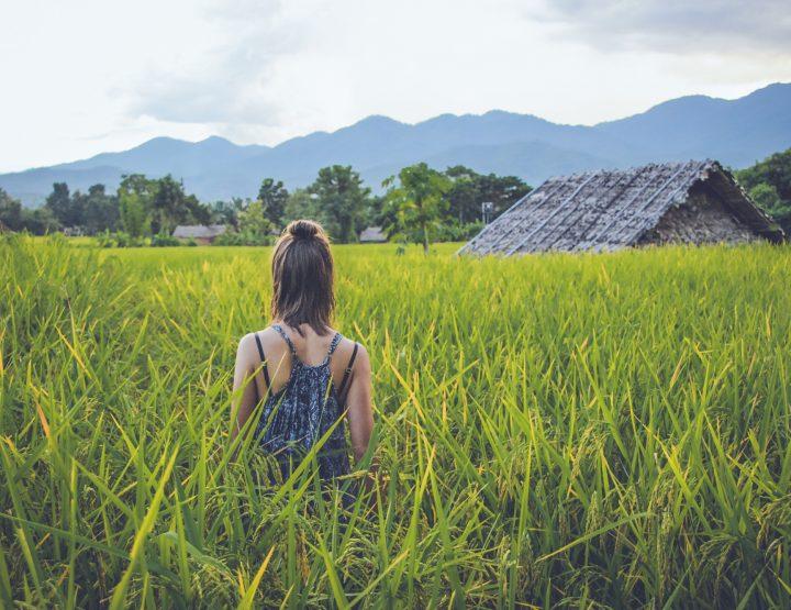 Onze favoriete backpacker hostels in Thailand