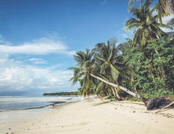 Tips voor Siargao, het mooiste eiland van de Filipijnen!