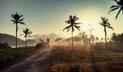 Zo voorkom je Malaria en Dengue op reis: 7 handige tips