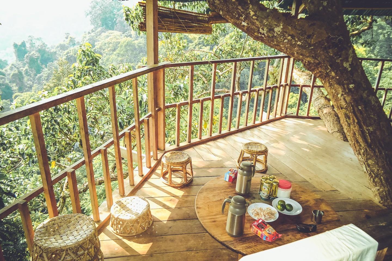 De Magische Boomhut : Reisjunk slaap in een boomhut van the gibbon experience in laos