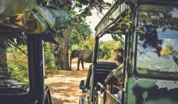Alles over backpacken door Sri Lanka