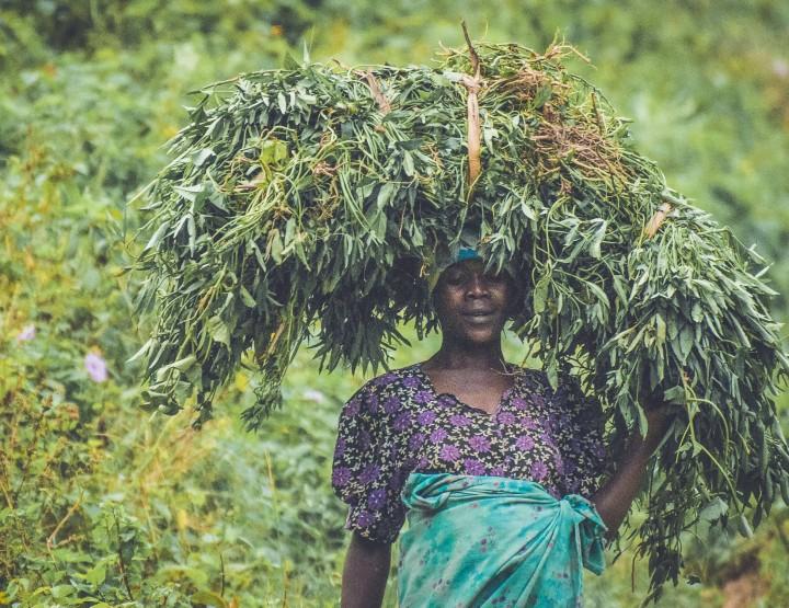 De mensen van Oeganda