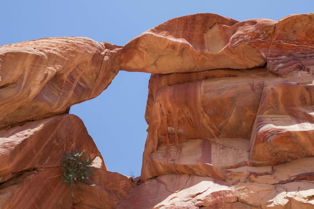 De oude stad Petra is ook door de natuur een bezoek waard