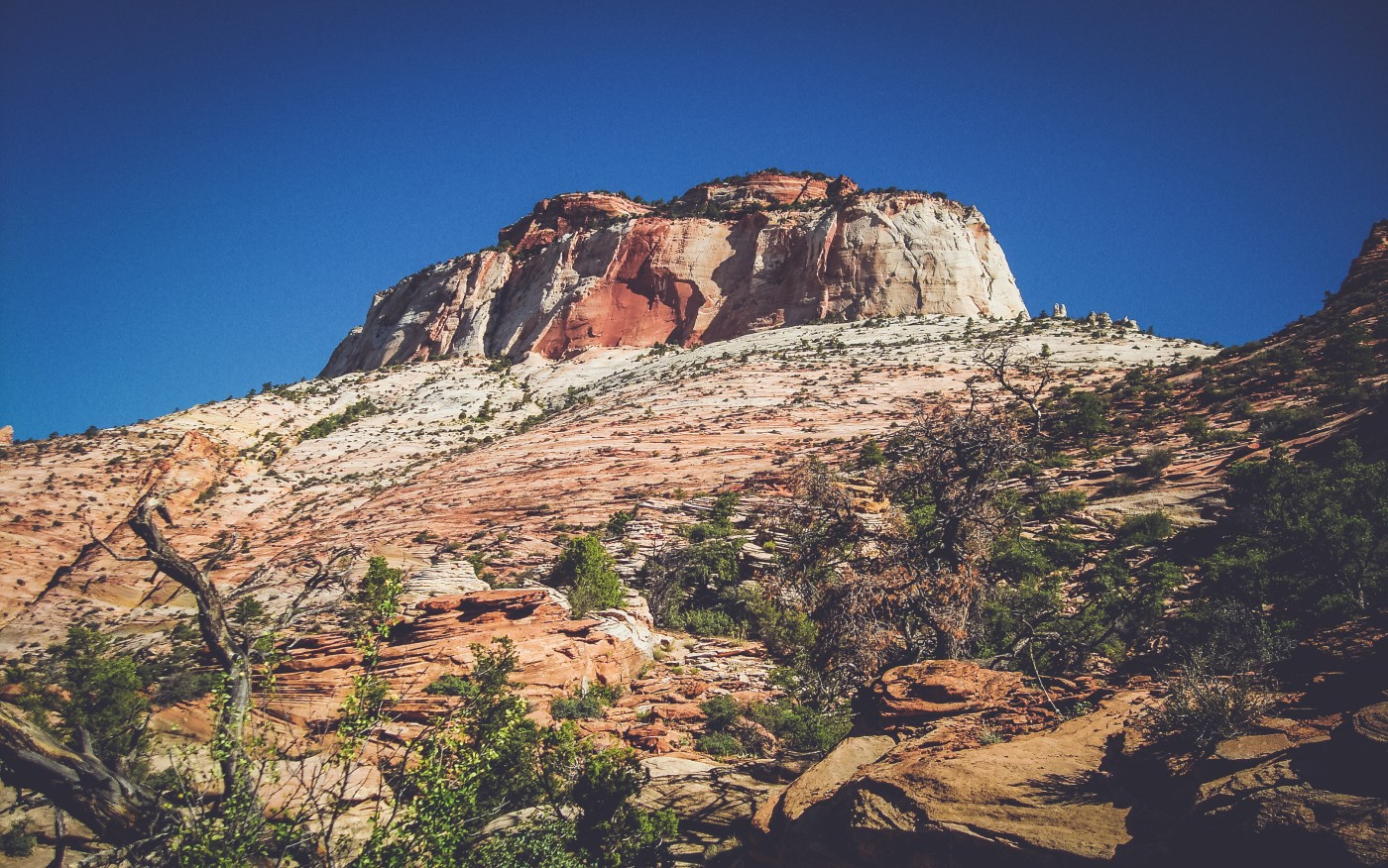 Zion NP, Utah (2)