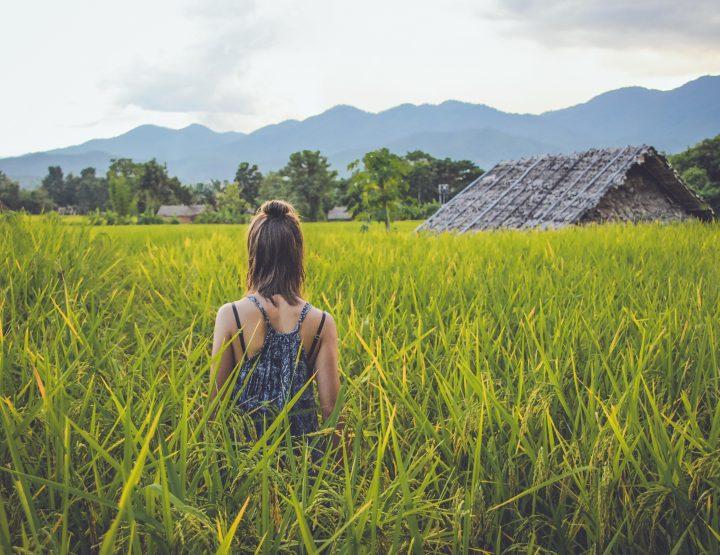 De ultieme bucket list voor je Zuidoost-Azië trip