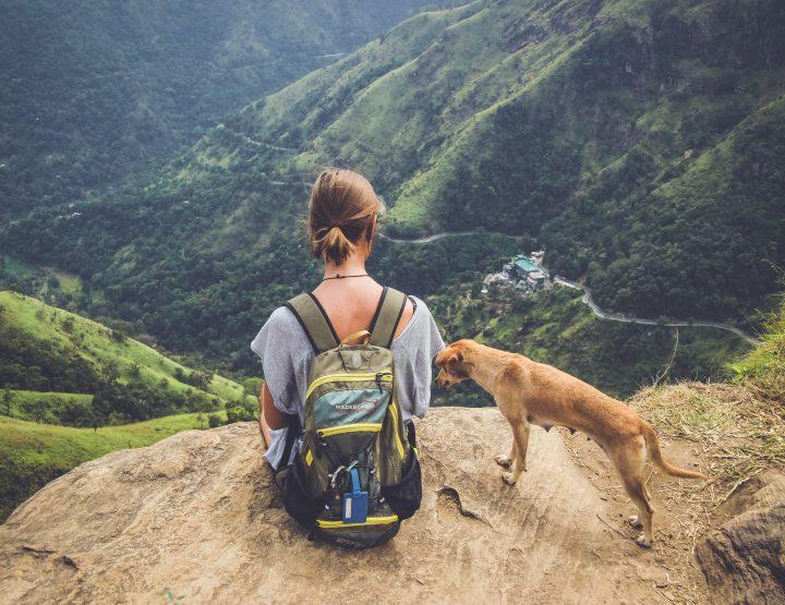 De ultieme reisroute voor Sri Lanka + tips