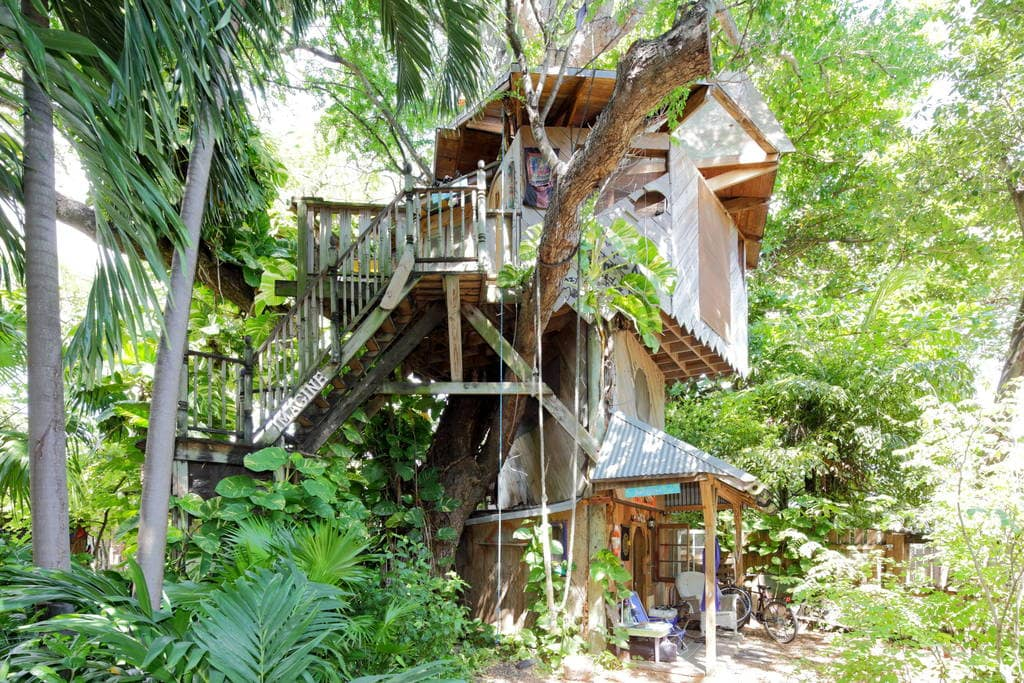 Treehouse Canopy Permaculture Farm