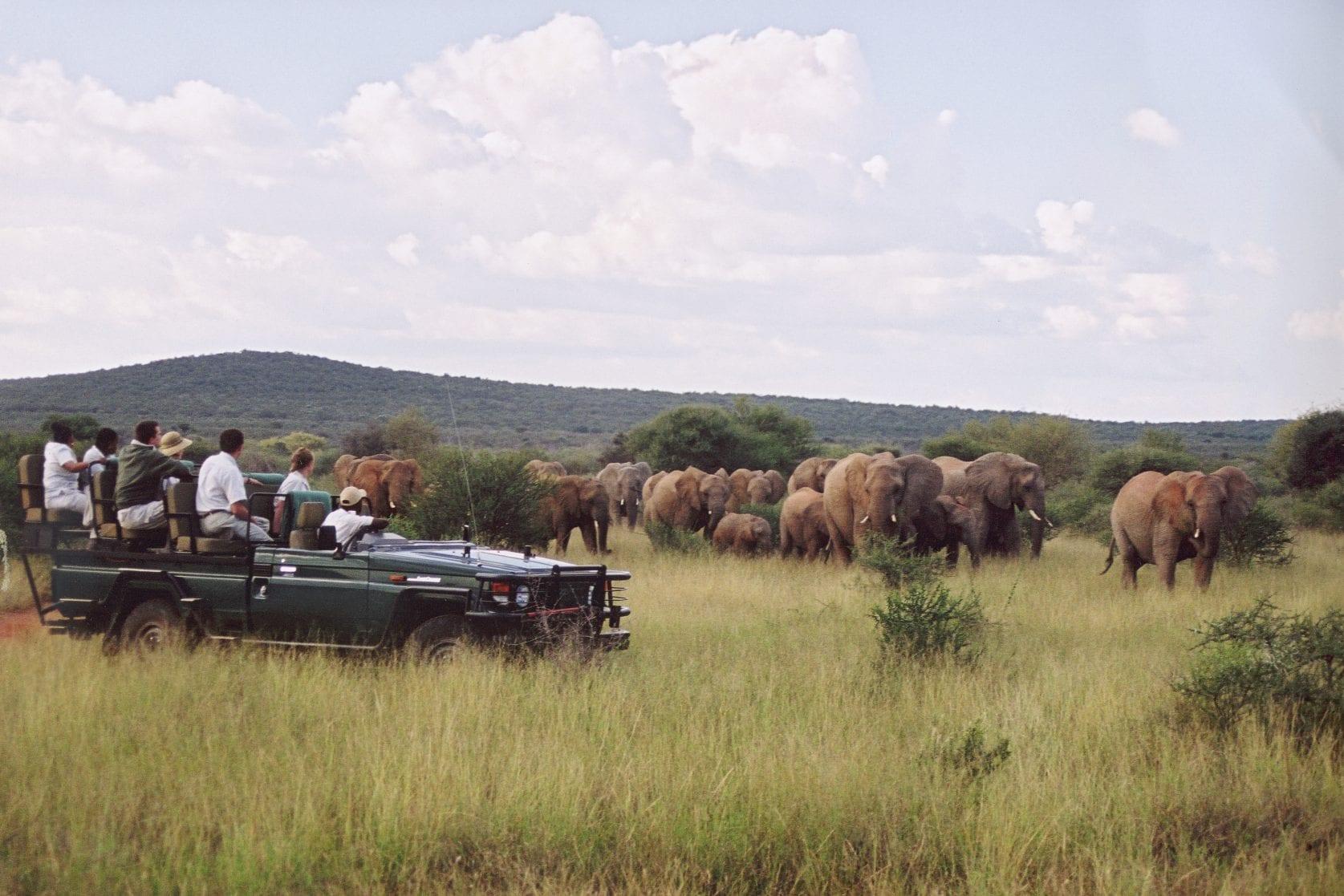 South Africa; Madikwe Game Reserve; Sanctuary Makanyane