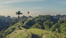 Waar te verblijven op Bali: 7 Leuke opties