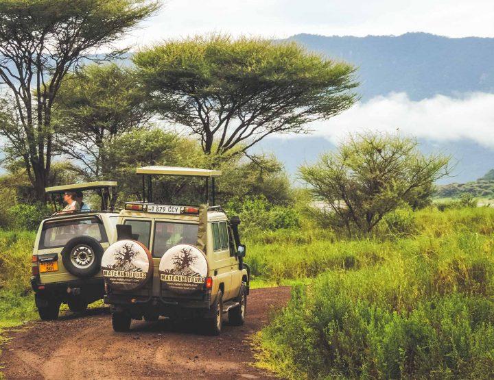 De unieke mix van natuur en cultuur in Tanzania