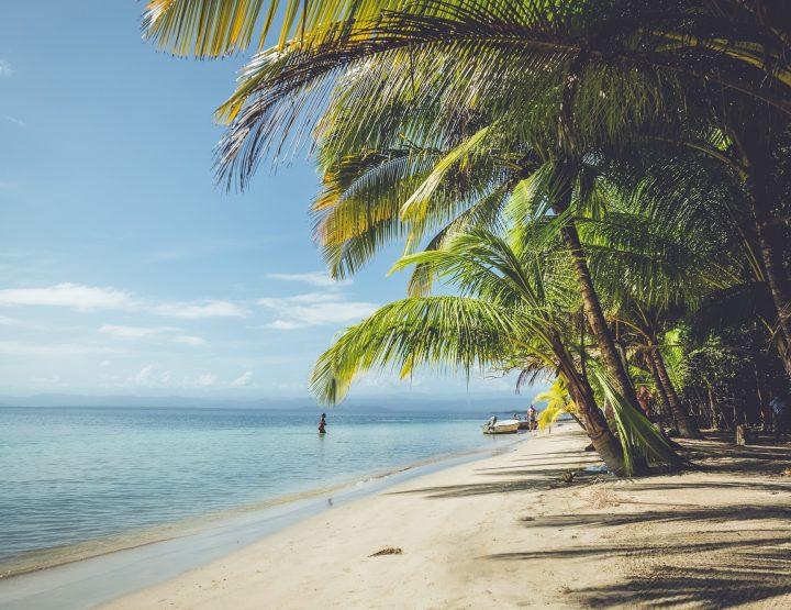 Tips voor het heerlijke Bocas del Toro in Panama