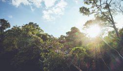De 6 mooiste nationale parken van Costa Rica