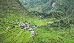 De mooiste rijstterrassen van Azië vind je in Batad, Filipijnen