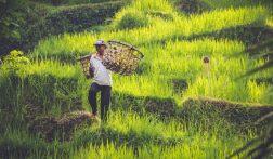 Tips voor de ultieme reisroute op Bali