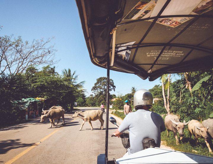 Wat te doen in Siem Reap? 6 Leuke tips!