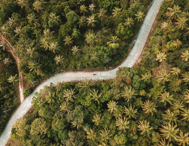Reizen in Thailand: 7 dingen die je vooraf moet weten